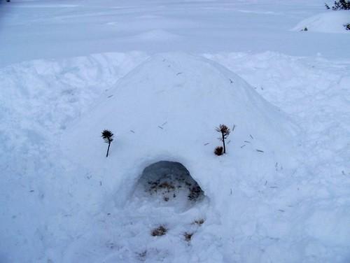 Le plus bel igloo du monde (par l'équipe des belettes)