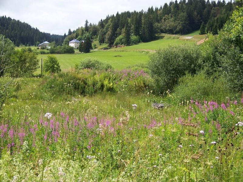panoramadujura2